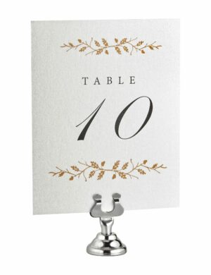 ALPINE PLACE CARD & TABLE NUMBER HOLDERS,